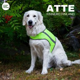 Yellow ATTE attention vest size XXL photo Tiina Korhonen / TK Photography