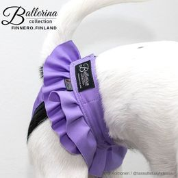 Diva wears Ballerina heat pants violet and size XS photo: Tiina Korhonen