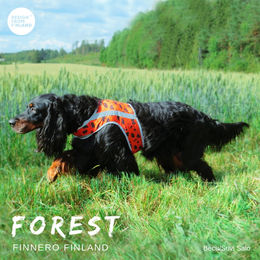 Becu wears FOREST attention vest size L photo: Suvi Salo