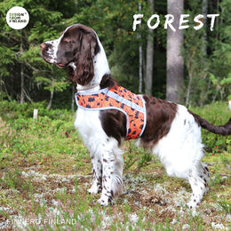 FOREST attention vest