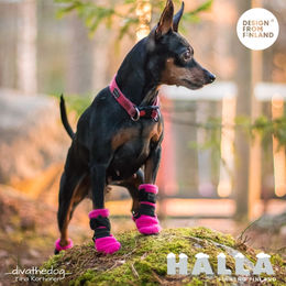 HALLA booties size XXS and pink photo: Tiina Korhonen