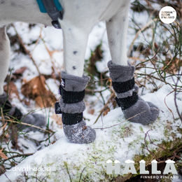 Diva have grey HALLA winter booties and size  are  S photo: Tiina Korhonen / _divathedog_