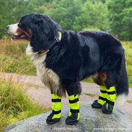 KURA protective booties size XL photo: @romeo_bernesemountaindog