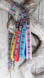 Nordic Lights leash all colors