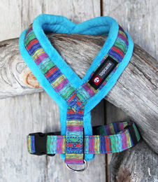 Nordic Lights Soft harness turquoise