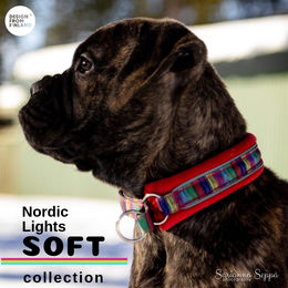 Nordic Lights Soft collar size 1 photo: Sarianna Seppä