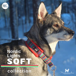 Inka wears Nordic Lights Soft collar red and size 3 photo: harmaanvalkea/ Senja Pikkusilta