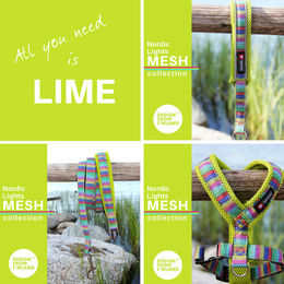 Nordic Lights Mesh Lime; collar, harness and leash