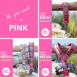 Nordic Lights Mesh pink; collar, harness and leash