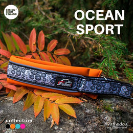 OCEAN SPORT collar orange photo:Tiina Korhonen _divathedog_