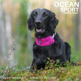Senja and hers fuchsia OCEAN adjustable collar size L photo: kennel Ninjatähden