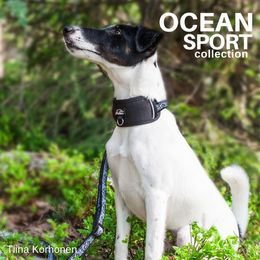 OCEAN adjustable collar with removable neoprene padding photo: Tiina Korhonen / @tassutteluayhdessa