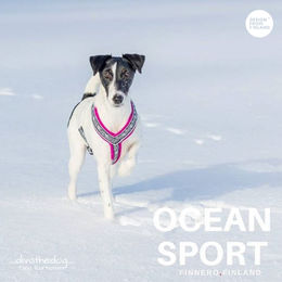 Diva wears OCEAN SPORT harness fuchia and size 35 cm photo: Tiina Korhonen/ _divathedog_