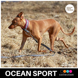 OCEAN SPORT collar pink photo: Jorma Ylinen