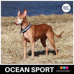 OCEAN SPORT black collar size  2,5 photo: Jorma Ylinen