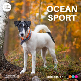 Diva have OCEAN SPORT collar size 1 photo: Tiina Korhonen/ _divathedog_