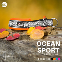 OCEAN SPORT orange photo:@miikkuvaan
