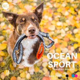 Priima loves orange OCEAN SPORT leash photo: @miikkuvaan