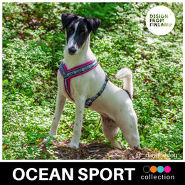 OCEAN SPORT harness pink. Diva wears size 35 cm photo: @_divathedog_