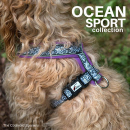 OCEAN sport harness violet photo: The Cotswold Spaniels