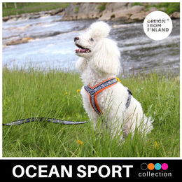 OCEAN SPORT Y harness orange 35 cm