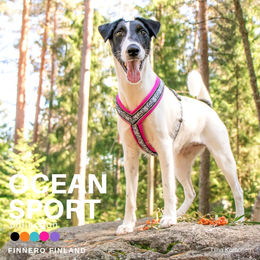 OCEAN SPORT harness fuchsia photo: Tiina Korhonen