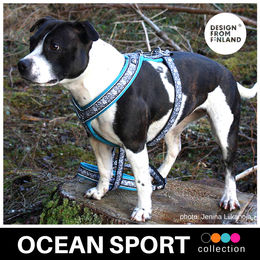 OCEAN Sport harness turquoise photo: Jenina Liikanoja