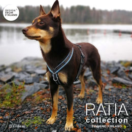 RATIA 8 shape MESH harness size 45 cm photo:  Kiia Jäppinen / @kiidaj