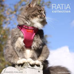 RATIA vest harness size is XS photo: Irina Linjala-Hyökki