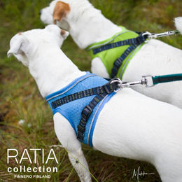 Eden and Nani wears Ratia Mesh vest harness sky blue and lime sizes are S photo: Miikku Pietilä / MiikKuvaan