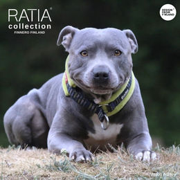 Ramsey wears RATIA soft collar lime photo: Jason Ashley / @bluestaffy