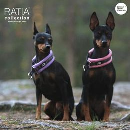 Wisla and RATIA pink soft collar and Elli wears violet. Both collars are size 0 photo: @terrieritytot