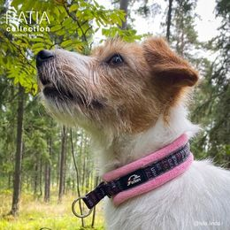 Isla and RATIA pink soft collar size 0 photo: @isla.linda/ Linda Rasi