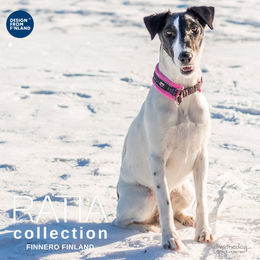 RATIA Soft collar with Grafico pattern wears Diva size 1 photo @_divathedog / Tiina Korhonen