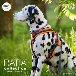 RATIA 8 shape harness orange Alma