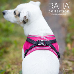 RATIA vest harness from back photo: Miikku Pietilä