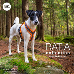 RATIA SPORT 8shape harness orange size 35 cm photo: Tiina Korhonen @_divathedog_