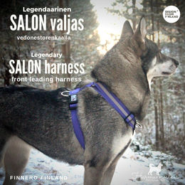 Violet SALON harness size M photo: Senja Pikkusilta / harmaanvalkea