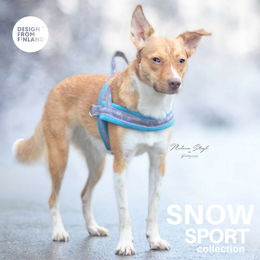 SNOW SPORT T harness turquoise photo: Melanie Stagl