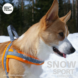 Snow T harness size2 Topi The Corgi