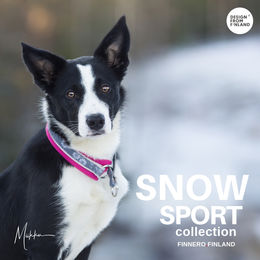 Hups wears SNOW SPORT collar size 2,5 rasberry photo: Miikku Pietilä / @miikkuvaan