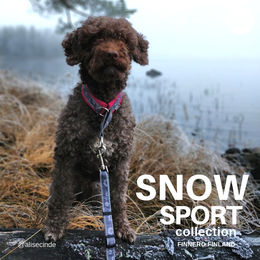 Alise wear SNOW SPORT collar rasberry size 2,5 photo: Jessica Juutinen / @alisecinde