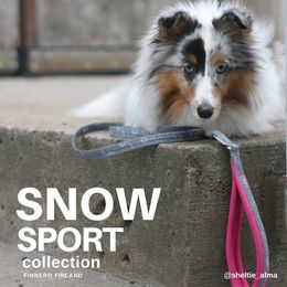 SNOW leash with rasberry padded handle photo: sheltie_alma/Jenni Juhajoki