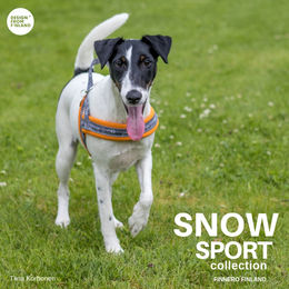 SNOW SPORT harness ornage size 1,5 photo: Tiina Korhonen / @tassutteluayhdessa