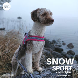 Cinde wears pink SNOW SPORT harness size 2 photo: Jessica Juutinen/@alisecinde