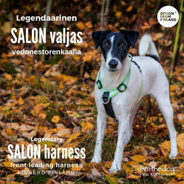 Apple green Salon harness photo: Tiina Korhonen / _divathedog_