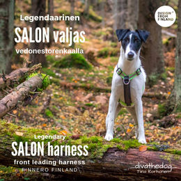Salon Harness green apple size S photo: Tiina Korhonen / _divathedog_