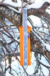 Snow Sport Collar Orange