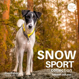 SNOW SPORT collar yellow photo: Tiina Korhonen / _divathedog_