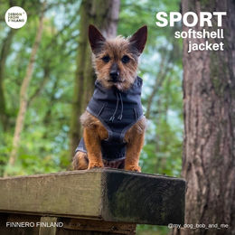 Bob and his new SPORT jacket photo: Stacey Kirk/ @my_dog_bob_and_me Arctic Wolf UK